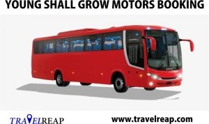 Young Shall Grow Motors, Online Booking, Prices Lists, Website & Parks